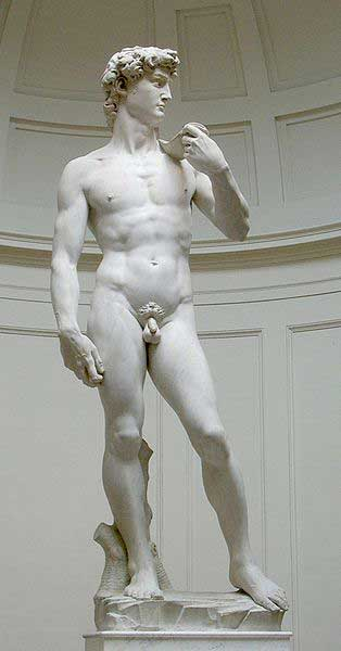 What Year Was The Statue Of David Finished ?